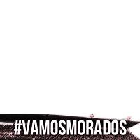#VamosMorados