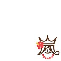 Arashi Hawaii 2014