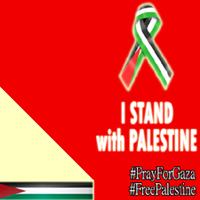 dukung palestina dengan mengganti gambar profilmu