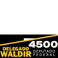 Delegado Waldir 4500