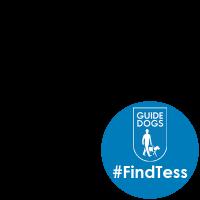 #FindTess