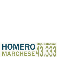 Homero Marchese 43.333