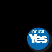 I'm still Yes