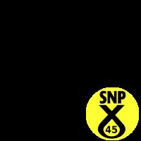 SNP The 45