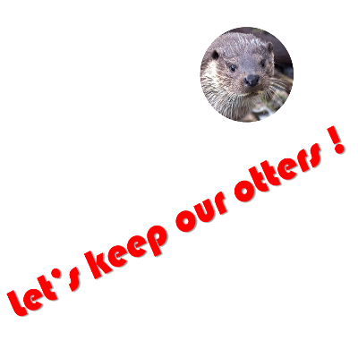 Let's keep our Otters!