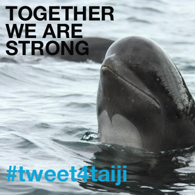 Together we are strong #tweet4taiji