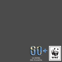 Hora del Planeta/Earth Hour