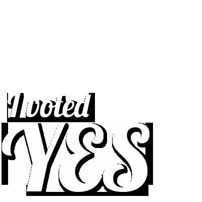 I voted YES