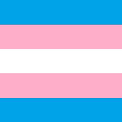 Celebrate Trans Pride!