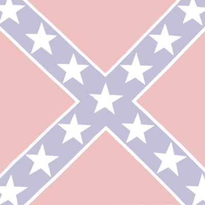 Support the Confederate Flag