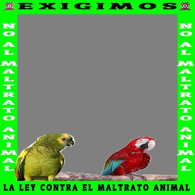 APOYO LEY AL MALTRATO ANIMAL