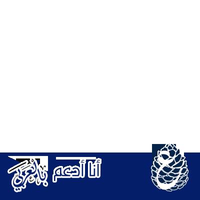مبادرة بالعربي