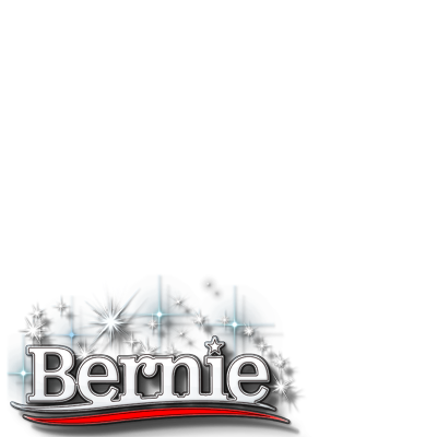 I support Bernie Sanders!