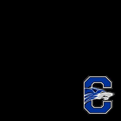 Chandler High School Logo