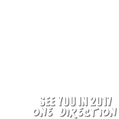 SEE YOU IN 2017 1D