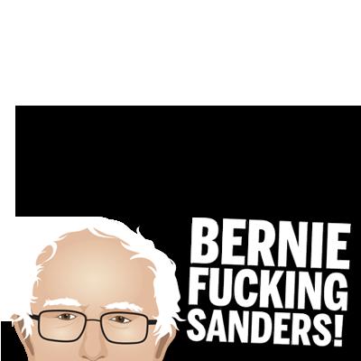 Bernie Fucking Sanders 2016