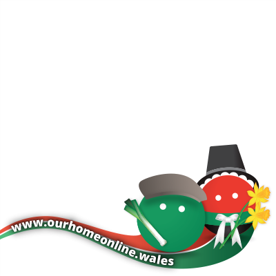 Making the web more Welsh