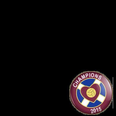 HMFC - 2014/15 Champions
