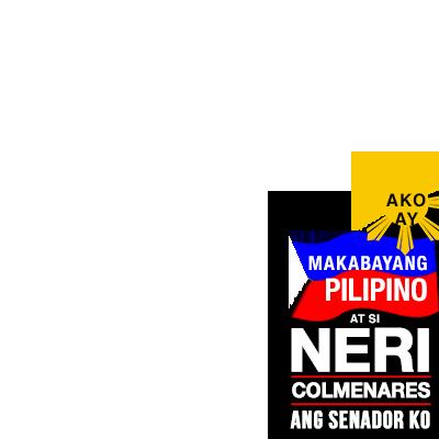 Neri Colmenares for Senator