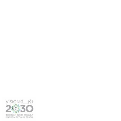 #رؤية_السعودية_2030