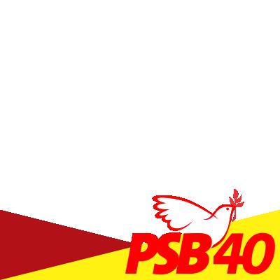 PSB40