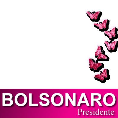 Bolsonaro Presidente Rosa