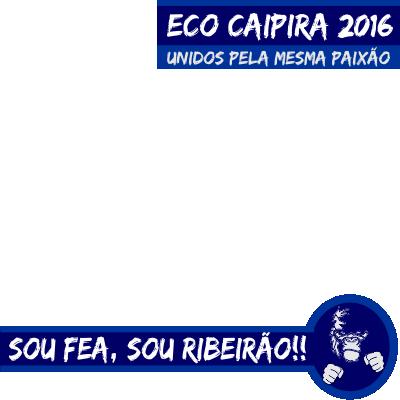 Eco Caipira 2016 D