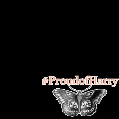 #ProudofHarry