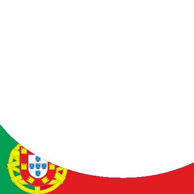 BTS - Bandeira PT