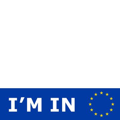 Vote Remain - Support Campaign   Twibbon