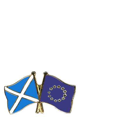 EU Saltire Flags