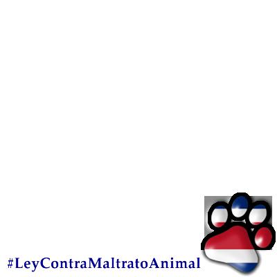 Ley contra Maltrato Animal