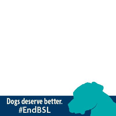 #EndBSL