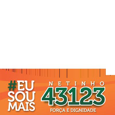 Netinho#43123