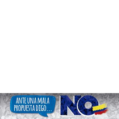 Voto NO el Plebiscito