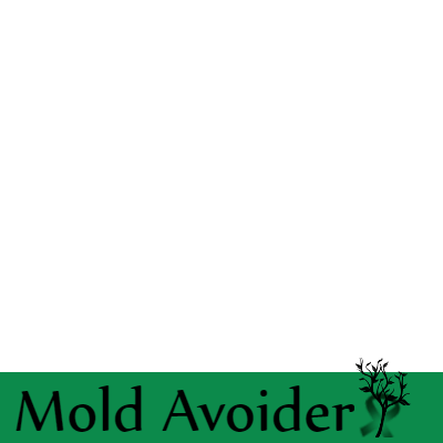 ME/CFS and Toxic Molds