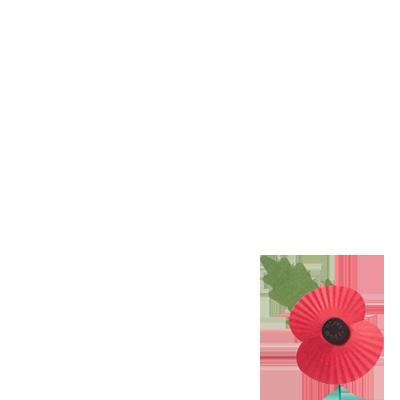 Poppy Appeal 2016