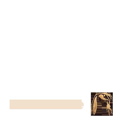 BackToMe