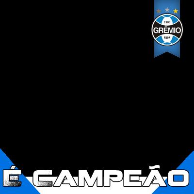 Grêmio Cãmpeão da Copa do Br
