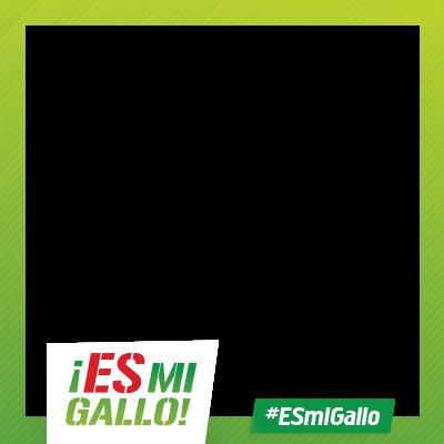 #ESMiGallo