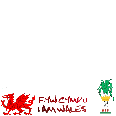Support the Welsh Rugby Team