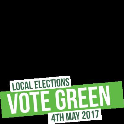 Vote Green in 2017