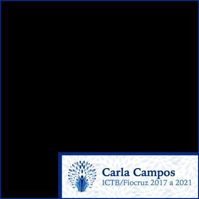 Carla Campos ICTB 2017