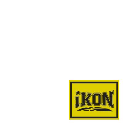 iKON - 'NEW KIDS : BEGIN