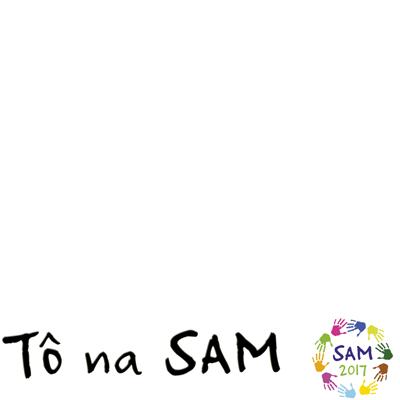 SAM 2017