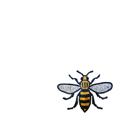 Bees for Manchester