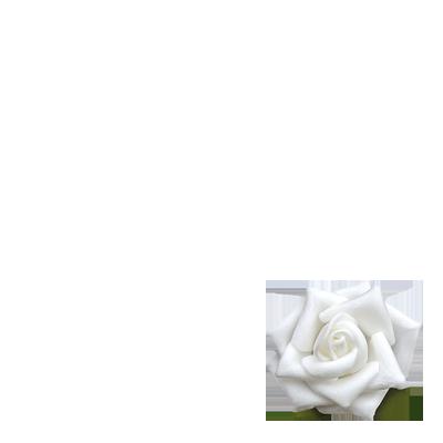 White Rose Appeal