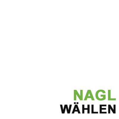Siegfried Nagl 2017