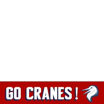 We Are Cranes