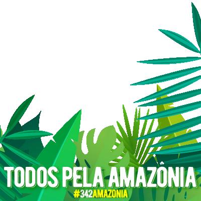 Todos Pela Amazônia!